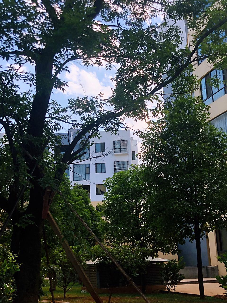 北辰三期岚春苑3室 2厅 2卫40.3万元