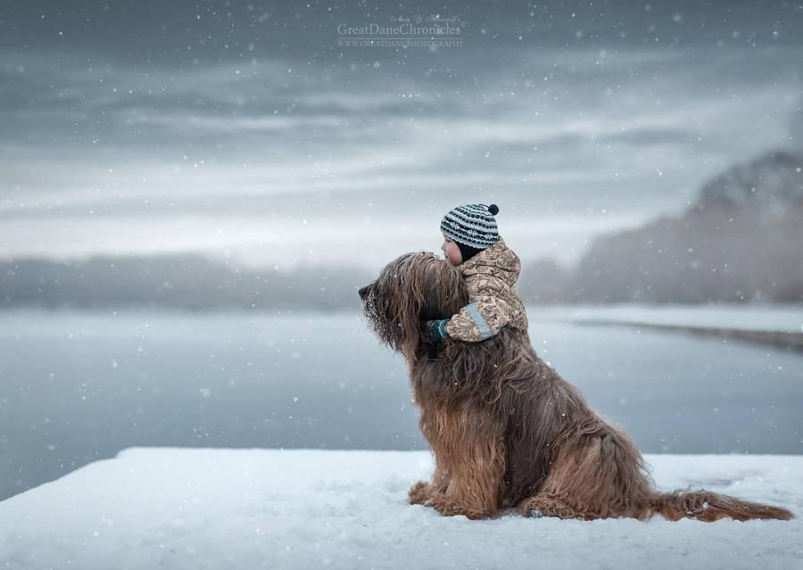 在孩子小的时候,大大的狗狗也会成为孩子们很好的伴侣,守护者(图片)