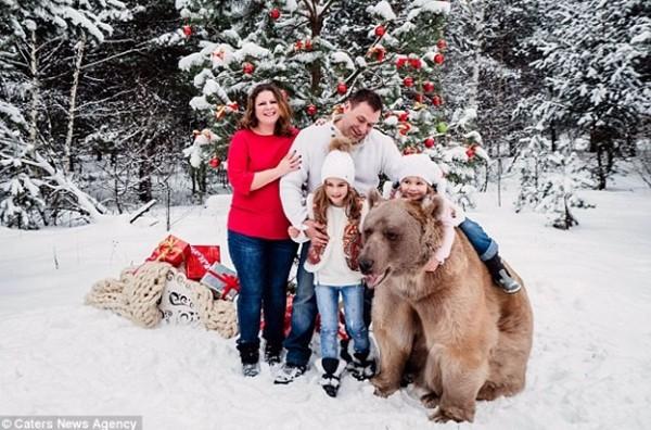 战斗民族!一家四口与灰熊拥抱拍圣诞照~两个小姑娘欢喜地和灰熊拥抱拍照
