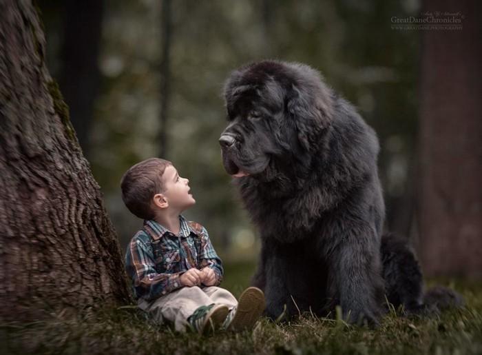 《小孩与他们的大狗》温馨童真~小朋友和他们的巨型犬的友谊(图片)