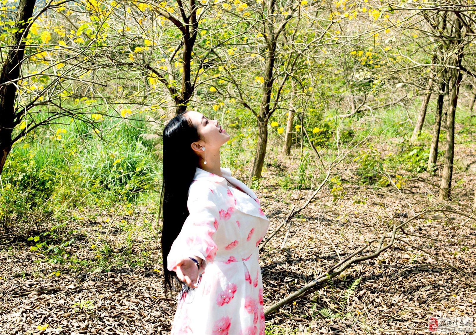 黄花飘落叶