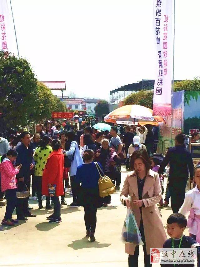 清明节期间,汉中虹彩花园游人如织