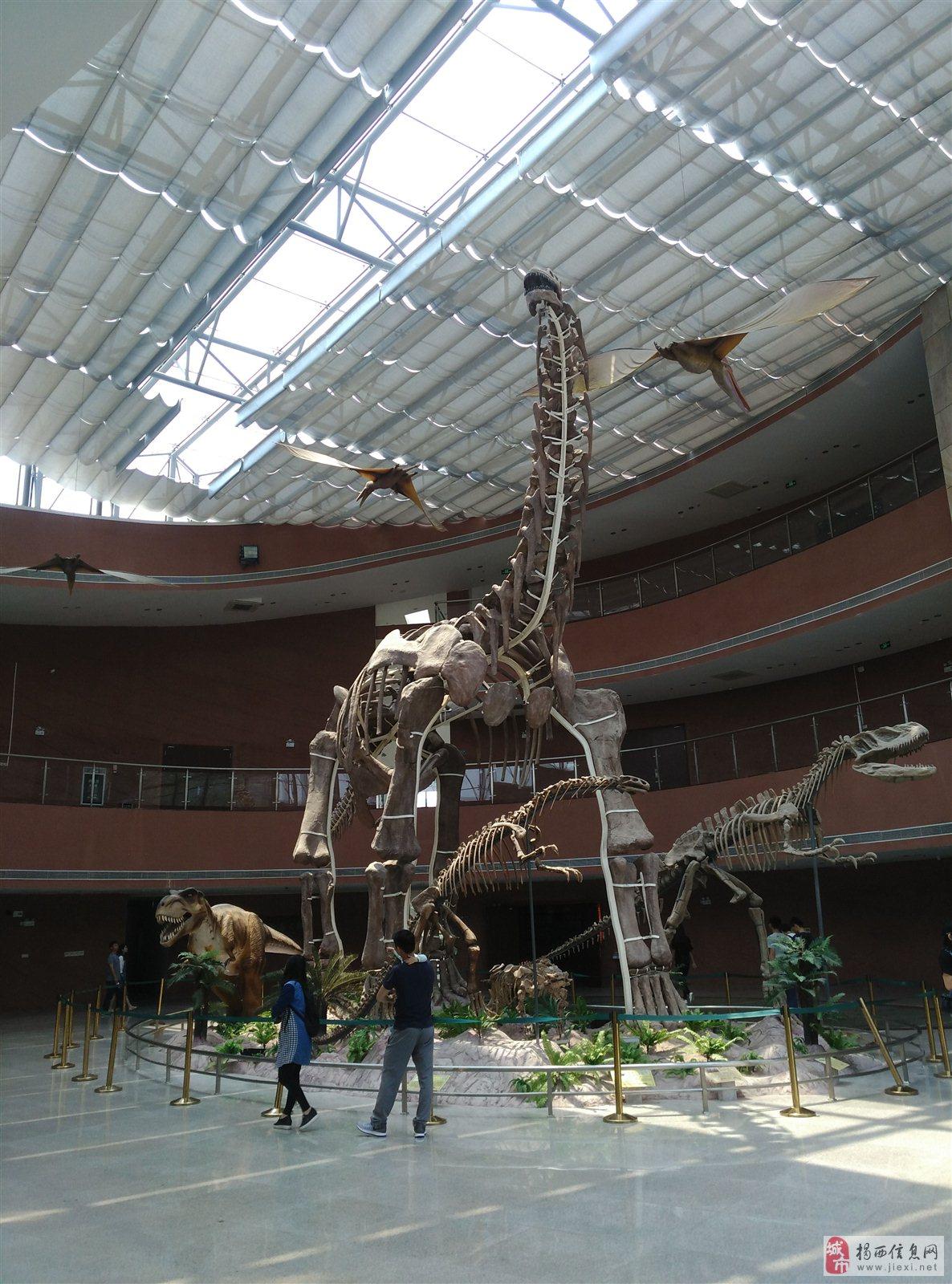 河源恐龙博物馆