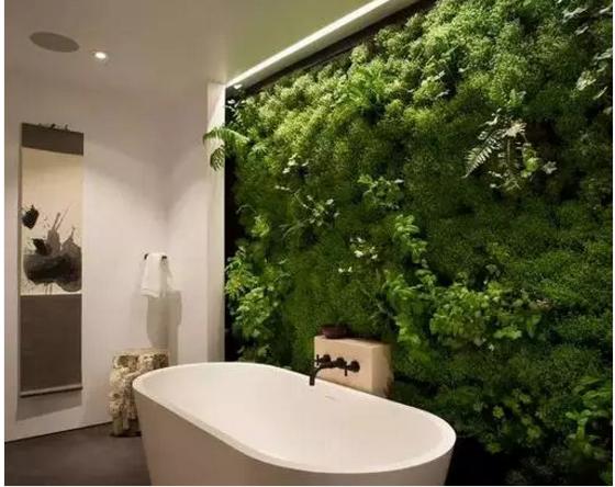 有一个这样的卫生间还用它干嘛,它负责美就好了!