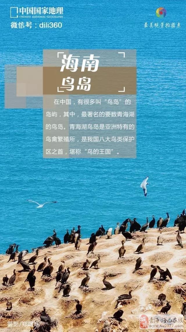 中国国家地理:青海的夏季,渲染了岁月的河