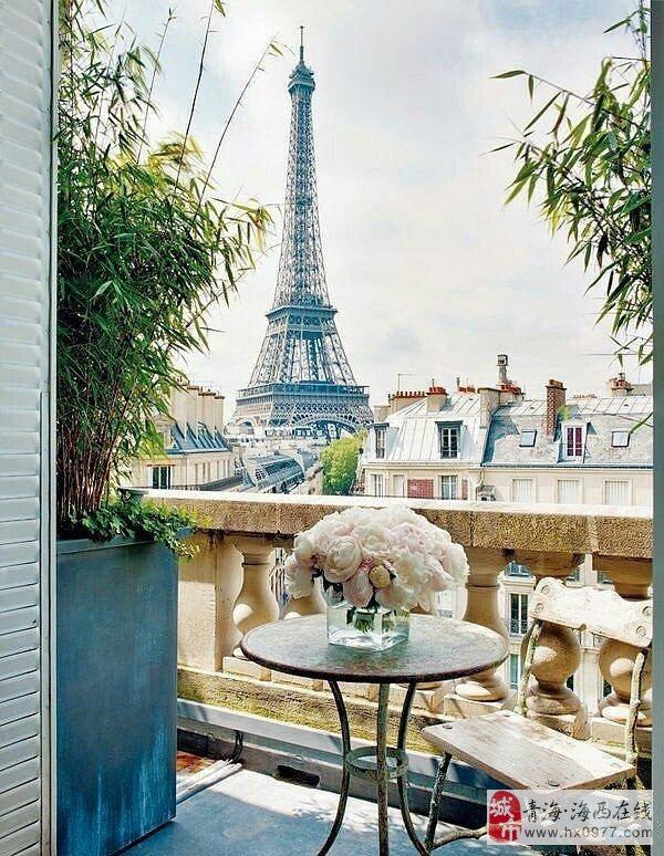 阳台里的小世界!