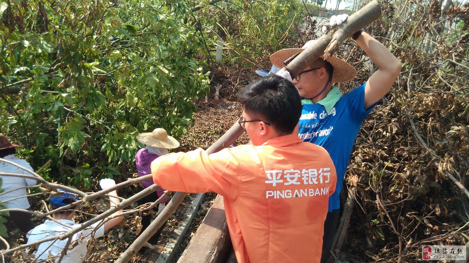珠海度假村酒店在社会各界的支援下,正加快清理树枝和做好园区的清洁