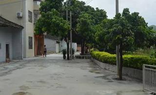 龙潭井田石溜头村:从三个方面着力推动人居环境见成效