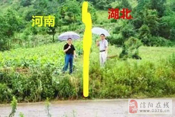 信阳,一个离武汉如此近,却又被划到河南的一个地方......