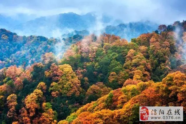 秒杀日本京都枫叶,四川这片亚洲最大红叶区,即将惊艳全国!