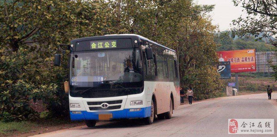想请问一下3路公交车学生坐多少钱呢?