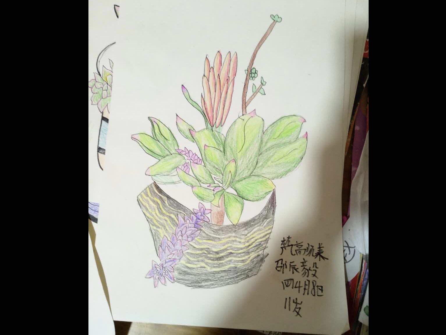 精品课程[铅笔画][彩铅][蜡笔]