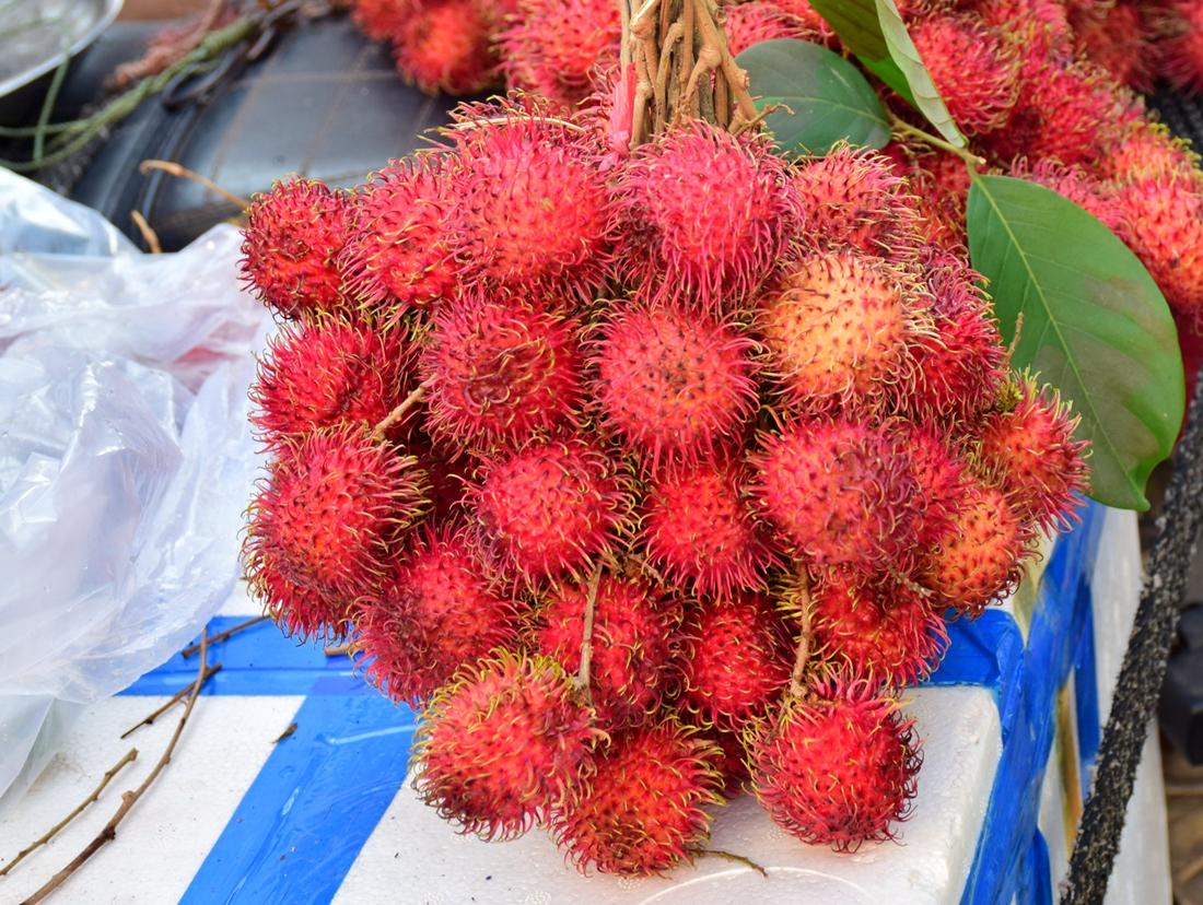 这是什么水果?你吃过吗