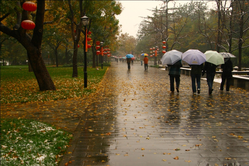 """本周末河南还是雨""""刷屏"""",最高气温下降4℃左右――长葛网"""