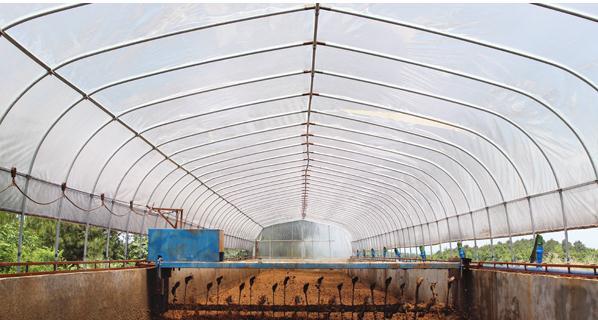 设计图分享 温氏家庭农场设计图 > 家庭农场  家庭农场 宽399×300高图片