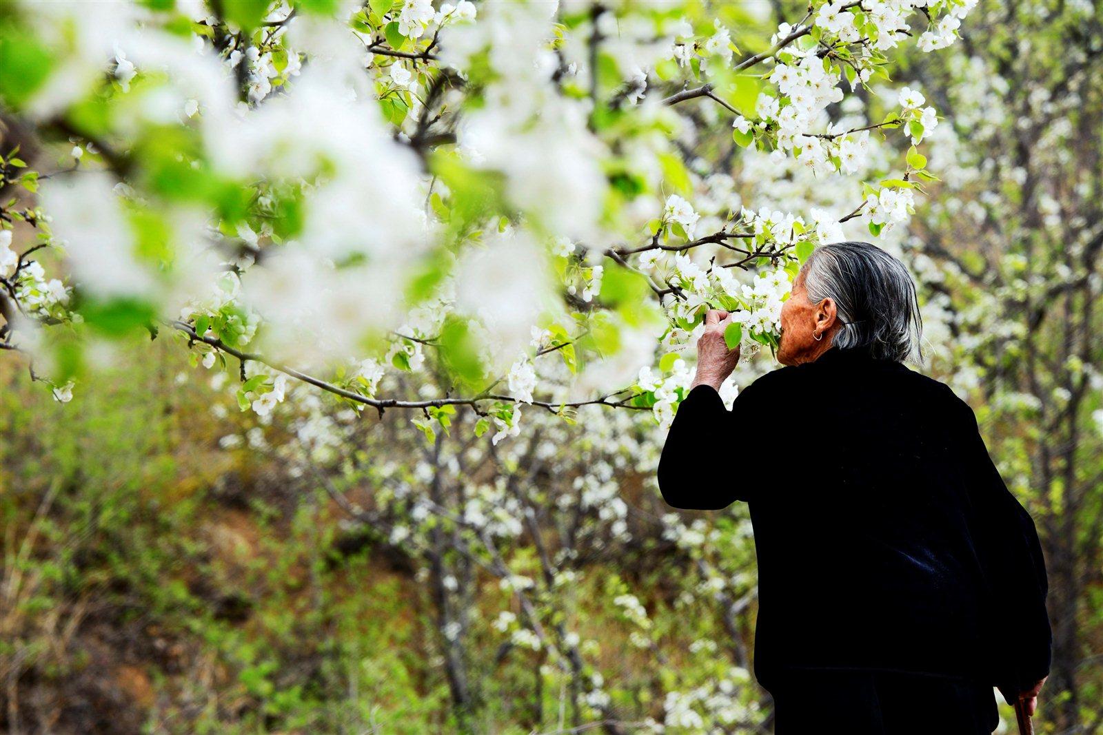市影协举办《我和春天有约》摄影作品展