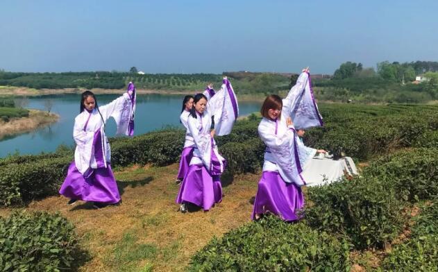 漳河边的茶园里来了一群穿汉服的美女,并且还在翩翩起舞,难道穿越了?