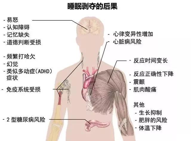 """滨州""""夜猫子""""注意!50万人帮你证实:熬夜真的会早死?"""