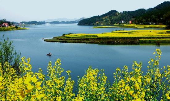 南郑点线面结合创建国家森林城市