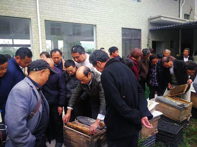 洋县残联开展残疾人实用技术和职业技能培训,累计培训600余人