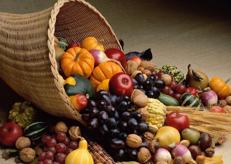 生物科技40年耕耘者王骏教授:浅谈水果蔬菜名称由来的那些事