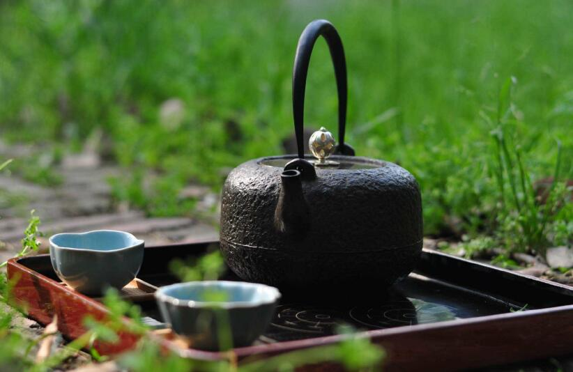 酶工业泰斗王骏教授:中国茶,你知多少?