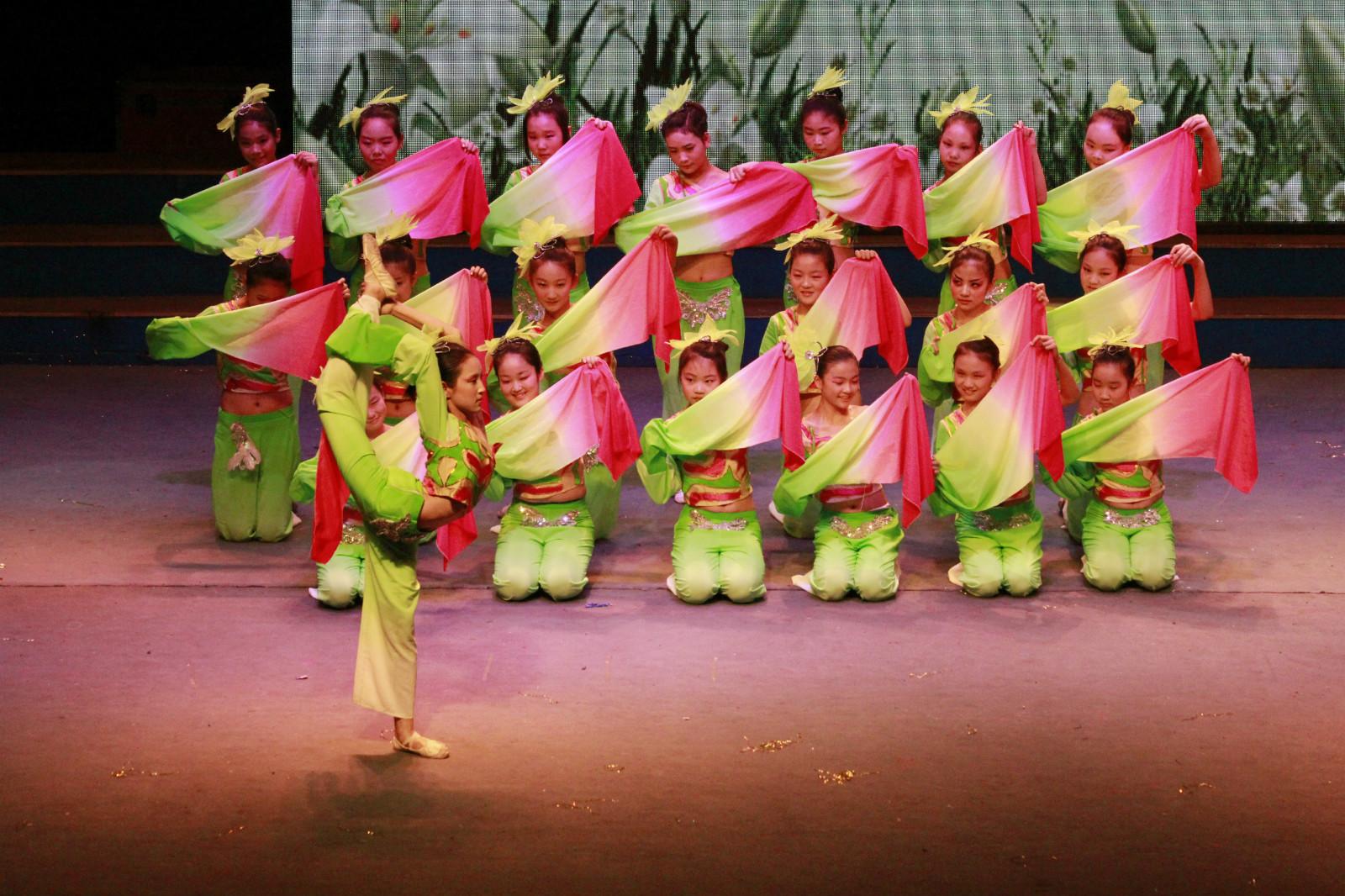 艺苗舞蹈学校是专注致力于少年儿童舞蹈艺术教育的最专业培训机构!