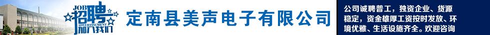 定南县美声电子有限公司