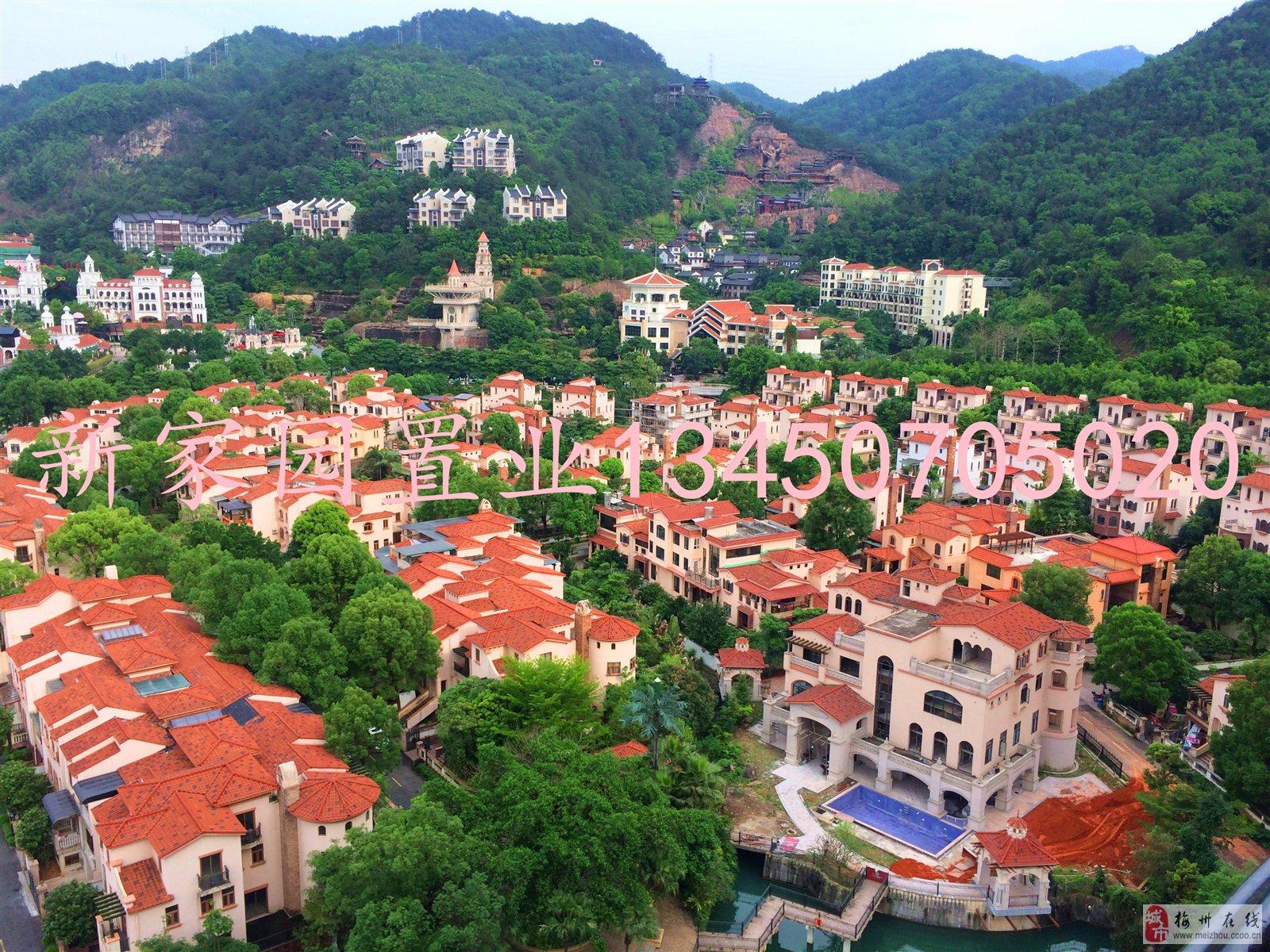 690萬出售江南客天下獨棟別墅占地800平方東南向