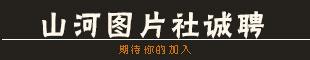 fun88市山河网络有限公司