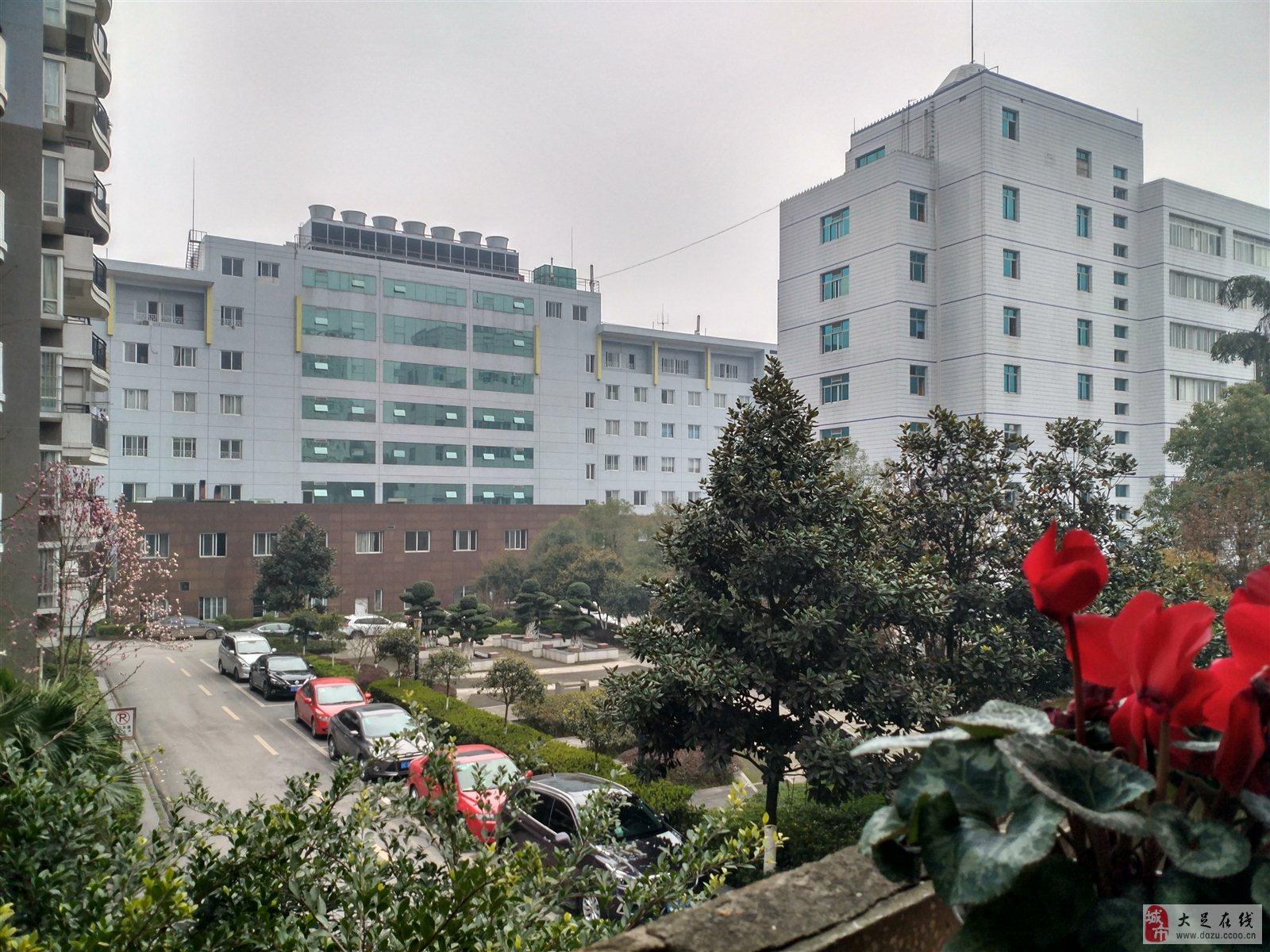 重庆周边大足老人民医院家2室1厅68平米小区