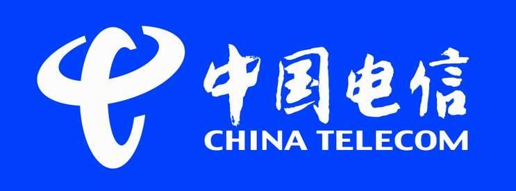 中国电信茌平分公司(政企部)