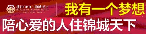 枝江CBD·锦城天下