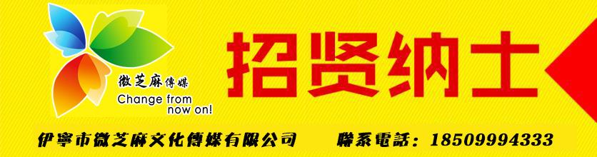 伊宁市微芝麻文化传媒有限公司
