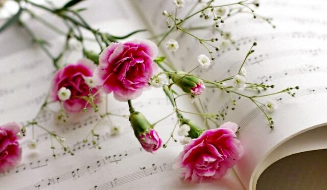 为您及您家庭中的母亲准备了精美贺卡和康乃馨, 送上我们真挚的祝福!