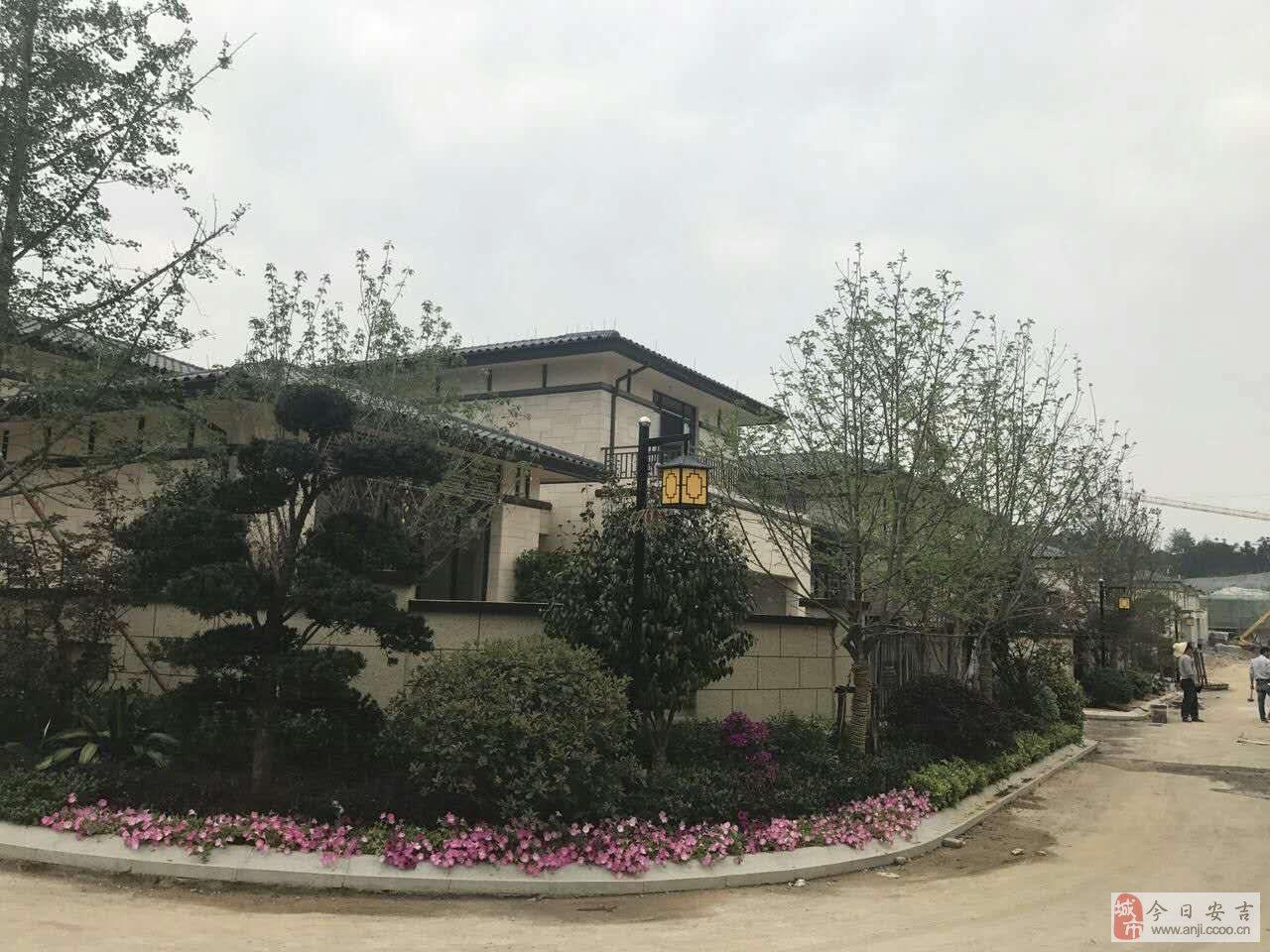 紫云东郡独栋别墅,唐风来袭,开发商网上直销