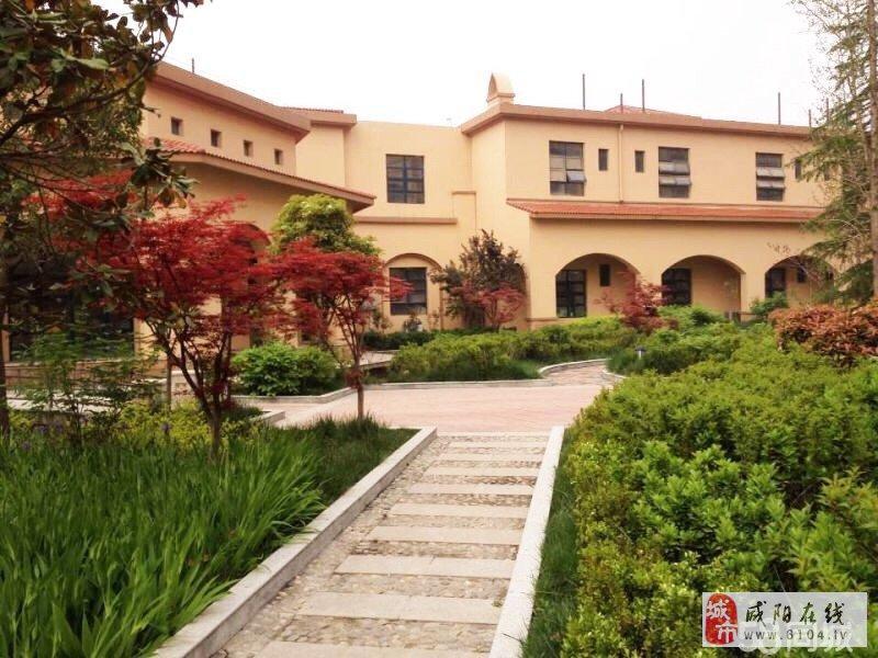 世纪大道【先河国际】三室好房子!全款更名,超低价位