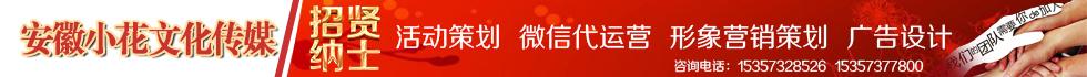安徽小花文化传媒有限公司