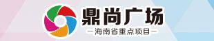 海南鼎尚置业有限公司