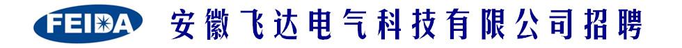 宁国飞达电气科技有限公司