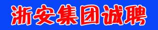 浙安集�F有限公司