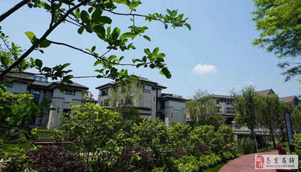半岛溪岸5室3厅6卫560万元,送花园690平