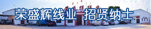 广东荣盛辉线业有限公司