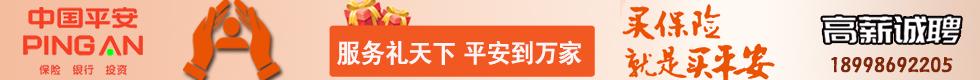 中国平安桐城支公司