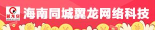 海南同城翼龙网络科技有限公司