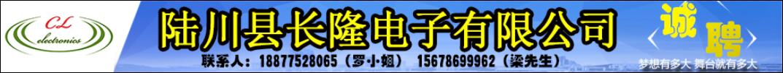 陆川长隆电子有限公司