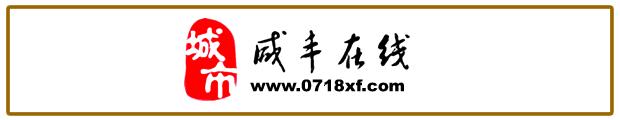咸丰县百姓电子商务有限公司
