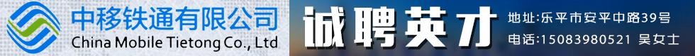 上海盈明交通科技有限公司(景德镇铁通合作企业)