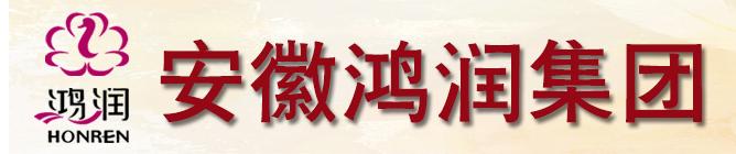 安徽鸿润集团