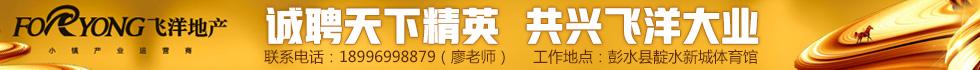 飞洋集团彭水飞洋实业发展有限公司